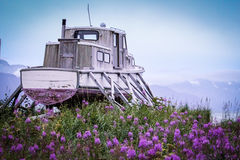 This old boat. An old ocean boat sits in a field of fireweed in a small, Alaskan village Royalty Free Stock Images