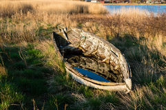 Old boat and reed Royalty Free Stock Photos