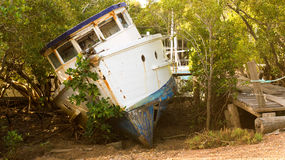 Old boat resting on ground. An old boat lying on it`s side under the shelter of mangrove trees Stock Photography