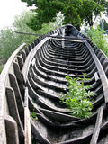 Old Boat (see the description). Old Boat With Cannabis Plant Inside Royalty Free Stock Photos