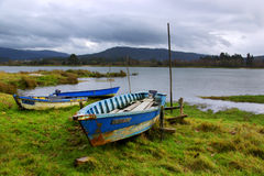 Old boats. Landscape with old row boats in the river shore Royalty Free Stock Image