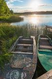Old boats in reeds on the lake. In the morning Stock Photo