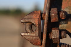 Old bolt. Simply love the details of it Royalty Free Stock Photography