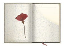 Old book. With the dried flower Royalty Free Stock Photo