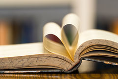 Free Old Book Stock Photography - 15064282