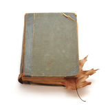 The old book. And the autumn turned yellow leaf Stock Images