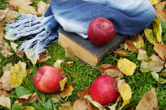The old book and apples among  foliage Stock Photo
