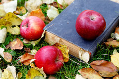 The old book and apples among foliage Stock Images