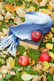 The old book and apples among  foliage Stock Image