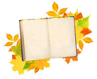 Old book and autumn leaves Stock Images