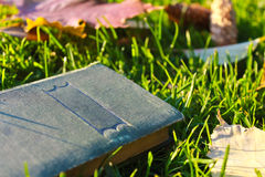 Old book. Back to school. Old book on green grass Stock Photo