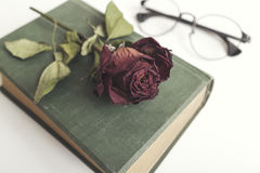 Old book with beautiful red dried roses Royalty Free Stock Photo