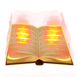 Old book burning Royalty Free Stock Photography