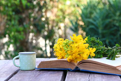 Old book, cup of coffee next to field flowers Royalty Free Stock Photos