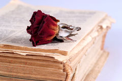Old book and dry rose Royalty Free Stock Photos