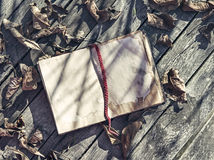 Old book with fallen leaves on wooden planks Stock Photos