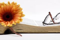 Old book and flower. A worn book with a single flower as a place marker. Reading glasses lay on top of the book Royalty Free Stock Photography