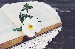 Old book and a flower on vintage lace doily Royalty Free Stock Photography