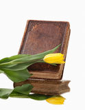 Old book and flower on white background Royalty Free Stock Photography