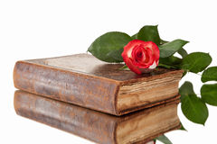 Old book and flower on white background Stock Image