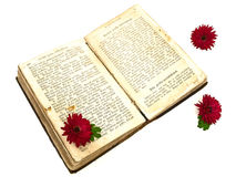 Old book and flowers Stock Images