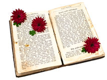 Old book with flowers Royalty Free Stock Image