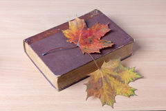 Old book and leaf Stock Image