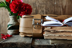 Old book leather suitcase Royalty Free Stock Photography