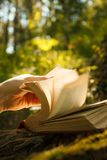 Old Book With Magic Lights in fairytale forest. stock image