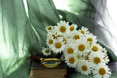 Old book, magnifier and daisies Royalty Free Stock Image