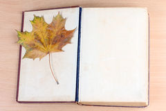Old book and maple leaf Royalty Free Stock Photo