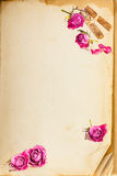 Old book page and vintage pink roses Stock Images
