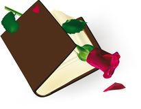 The old book with a rose Royalty Free Stock Photography