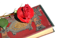 Old book and rose. stock photo