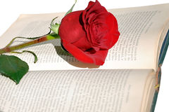 Old book and rose. Royalty Free Stock Photo