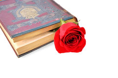 Old book with rose over white. Royalty Free Stock Photos