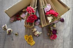 Old book standing on wooden table and dried roses. Stock Image