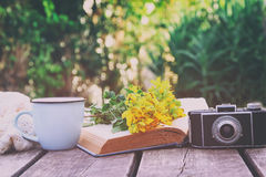 Old book, vintage photo camera next to field flowers Royalty Free Stock Images