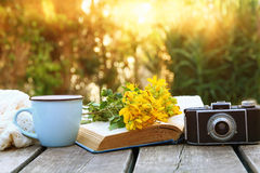 old book, vintage photo camera next to field flowers Stock Photos