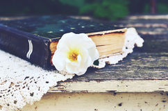 Old book and wild rose flower on vintage lace doily on garden table Royalty Free Stock Photo