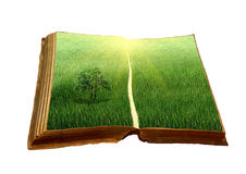 Free Old Book With A Landscape Stock Photography - 19869122