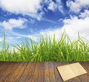 Old book on wood floor with green grass. And blue sky Stock Photo