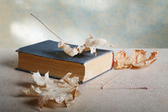 Old book with yellow maple leaves Stock Photo