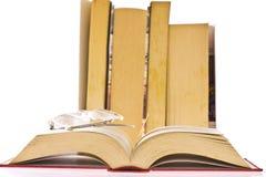 Old books. On white background Stock Image