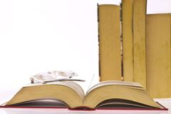 Old books. On white background Stock Photography