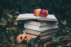 Old books against the background of fallen yellow leaves in the autumn garden stock photo