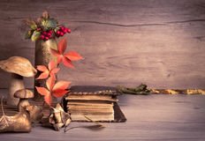 Old books, Autumn decorations on wood, text space Stock Photos
