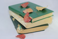 Old books and autumn leaves Stock Photo