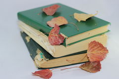 Old books and autumn leaves Royalty Free Stock Images