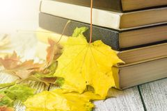 Old books in autumn leaves on wooden background. Toned royalty free stock photography